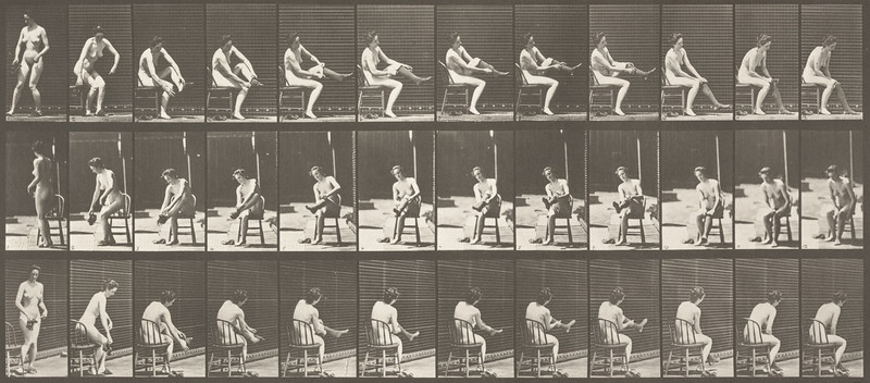 Nude woman sitting and dressing (Animal Locomotion, 1887, plate 418)