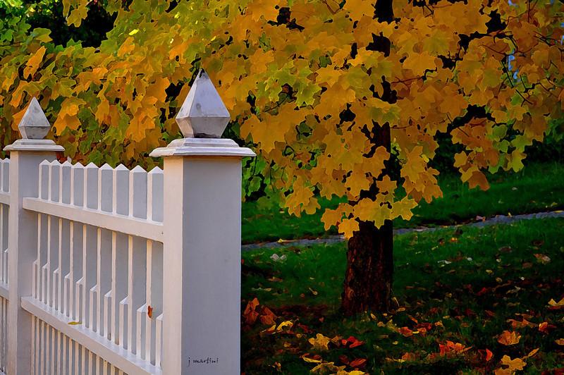 victorian fall 11-18-2010.jpg