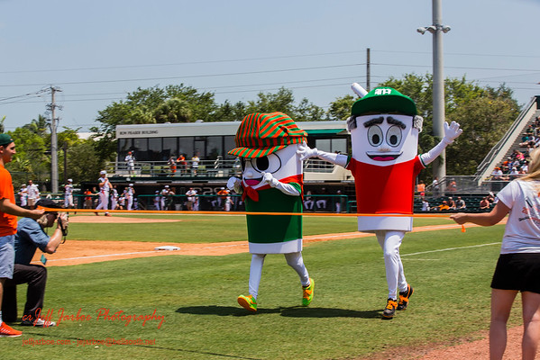 Canes' Baseball 2015