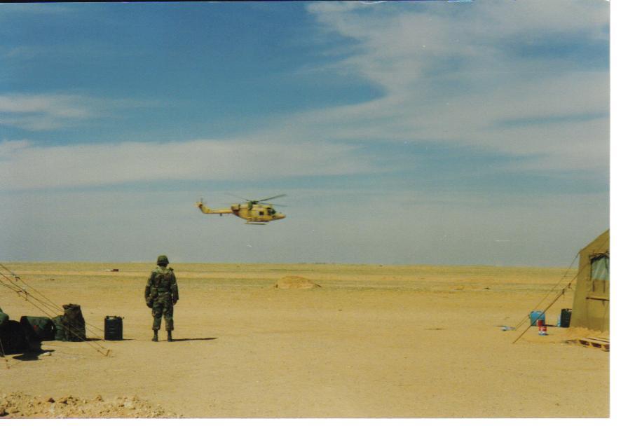 IMAGE: http://m-mason.smugmug.com/Desert-Storm/Desert-Storm-90-91-and-misc/Army-pics-045/675533736_RCGV7-XL.jpg