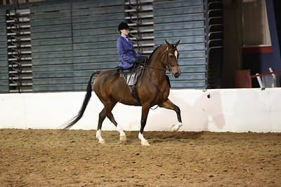 110.HA/AA Ladies Side Saddle