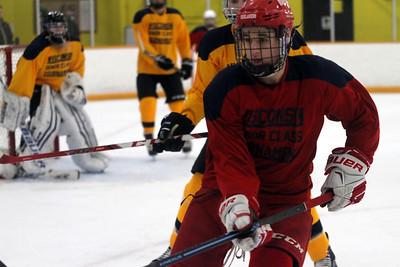 2016 Wisconsin Senior Prep Hockey
