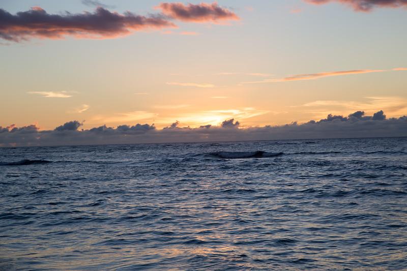Hawaii-North Shore 2017-9044.jpg