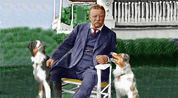 Roosevelt.GaWy_650x360.jpg