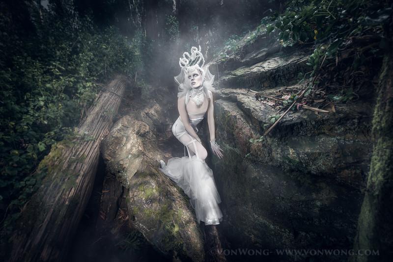 secret.forest-587-Edit.jpg