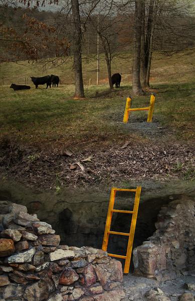 Under the Pasture