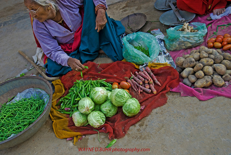 India2010-0204A-398A.jpg
