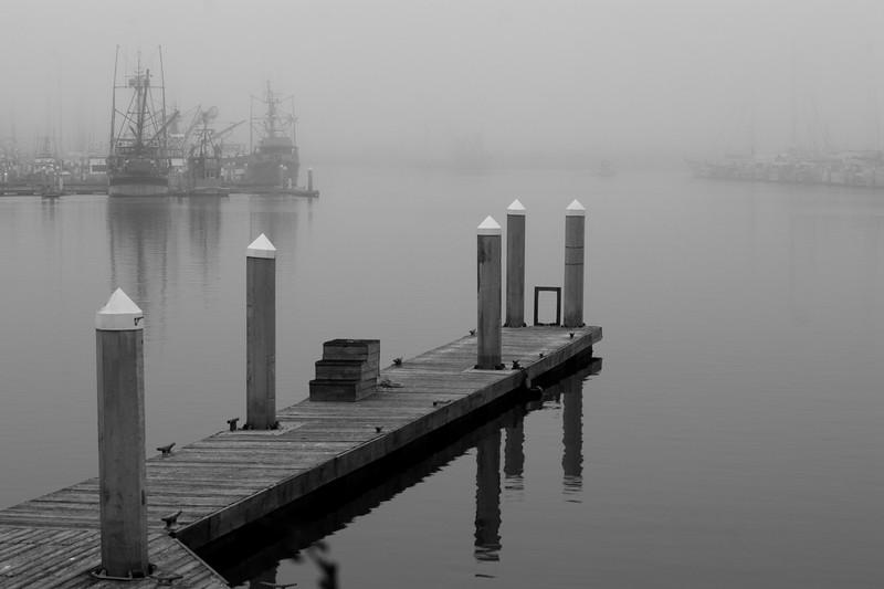 foggy dock.jpg
