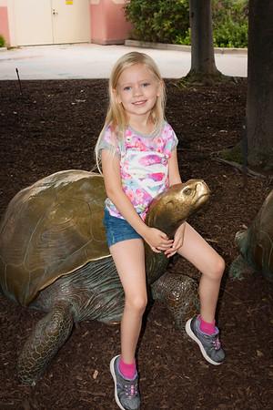 Sydney Zoo (not Becky) 08-01-2016