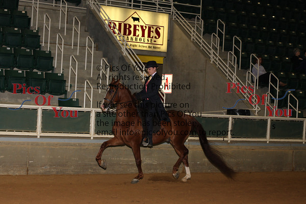 147 HA Country Pleasure AAOTR Championship