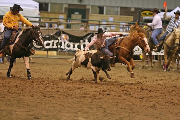 SLHSRA Steer Wrestling  02/24/2007