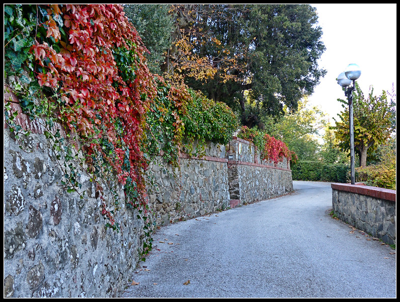 2014-11 Montecatini Alto 268.jpg
