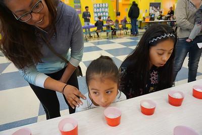 Sun Valley Elementary School   March 21, 2019