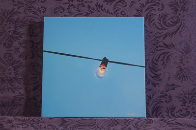 Hanging Light Bulb 2 - $40