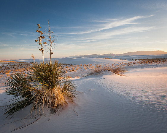 White Sands:  From Capture to Print - April, 2012