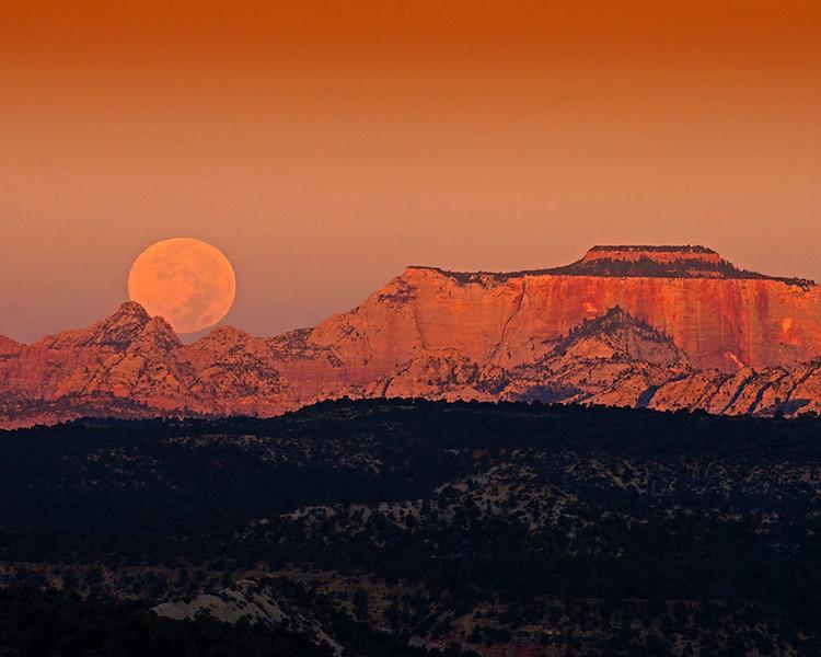 091 harvest moon jpg (1).jpg