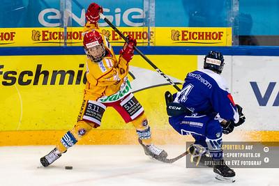 EVZ Novizen Elite - SCL Young Tigers