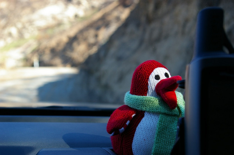 It was January so Xmas Penguin was still along for the ride.