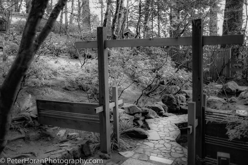 japanese-garden--16_51060341412_o.jpg