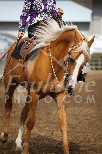 Western States Horse Expo 2016
