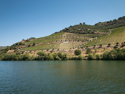 Along The Douro