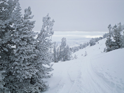 Ski Trip Tahoe 2010