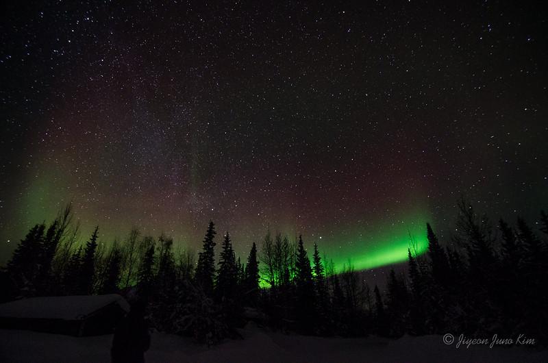 USA-Alaska-Wiseman-Aurora-2743.jpg