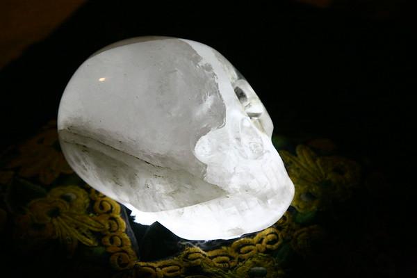 Max Crystal Skull, 2/6/10, Treasure Island FL