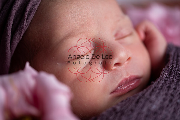 Ambra Newborn