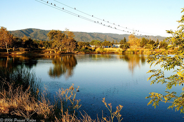 Los Gatos Creek Park and Vasona Park