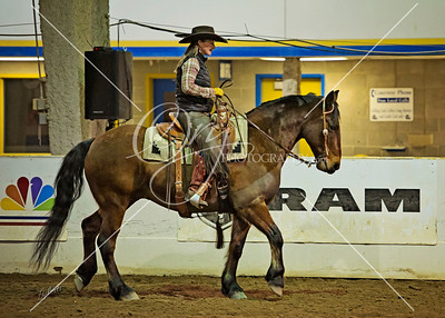 2014 Rocky Mountain Horse Expo