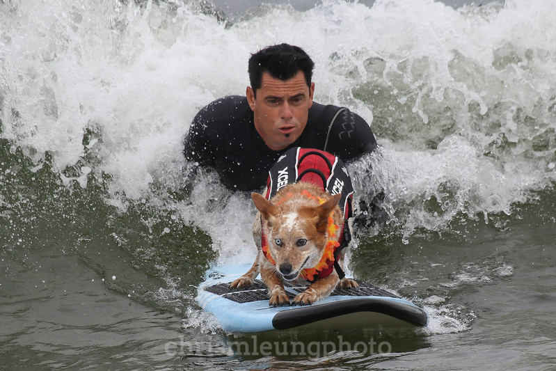 8/5/17: Skyler the Surf Dog and her human, Homer Henard at the 2017 World Dog Surfing Championships at Pacifica State Beach in Pacifica, Ca by Chris M. Leung
