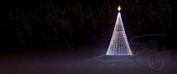 christmas lights in the park. stanley park, vancouver, bc