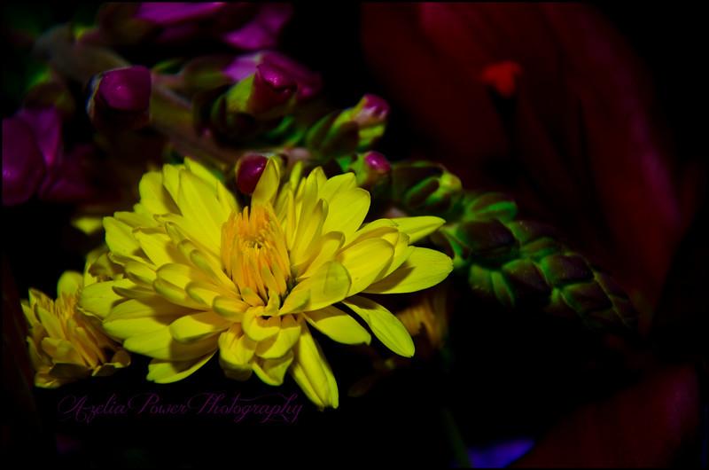 **  Flowers for Grandpa Bob **
