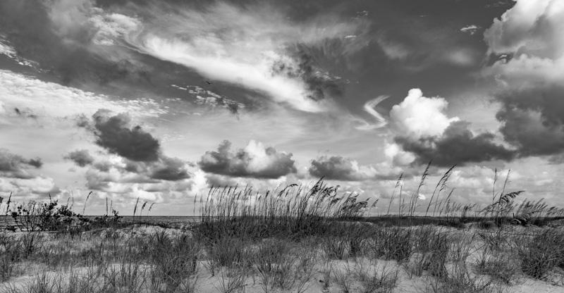SEA AND SKY   29
