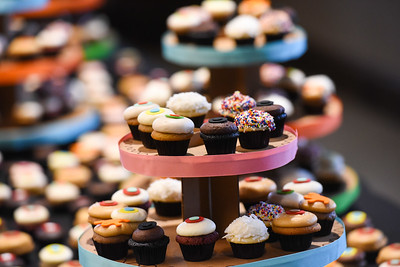 Founder of Sprinkles Cupcakes, Candace Nelson speaks to students