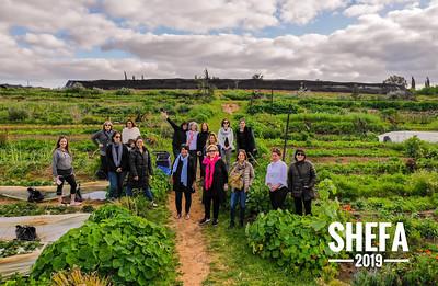 Shefa 2019