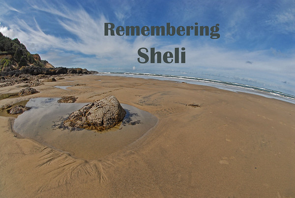 Remembering Sheli,  April 19, 2015