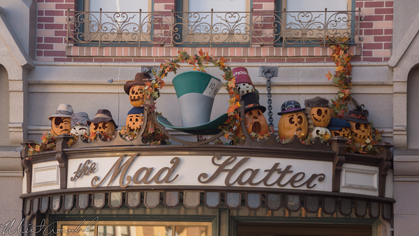 Disneyland Resort, Disneyland, Halloween, Main Street USA, Mad Hatter, Mad, Hatter, Hat