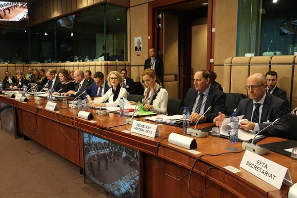 EEA-Council-14-November-2017