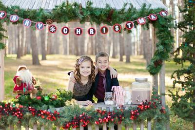 2015 Christmas Minis