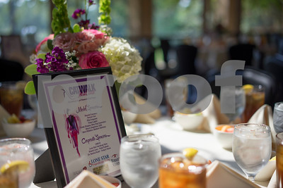 8/29/15 Catwalk For A Cause - Benefits Hope Haven by Rolan Ranido