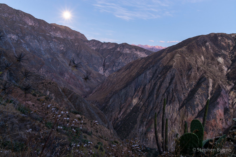 Colca Canyon-1308.jpg