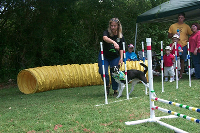 Pet Fest 2005