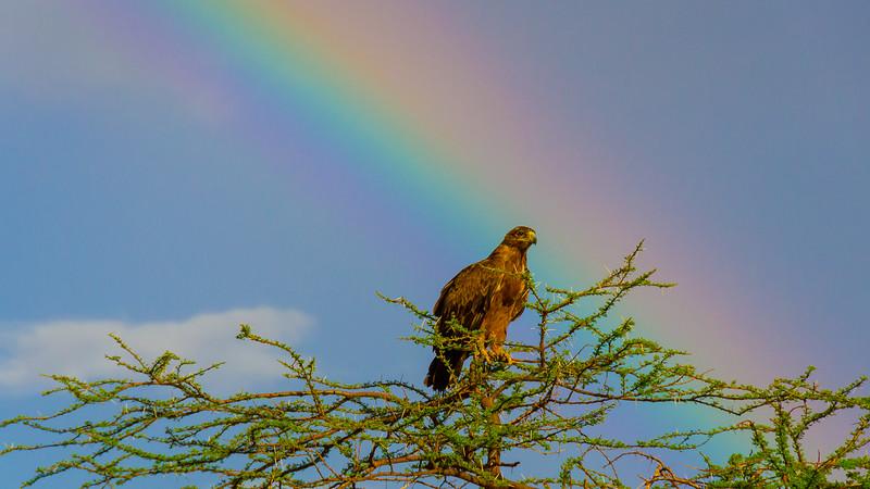 Kenya-0235.jpg