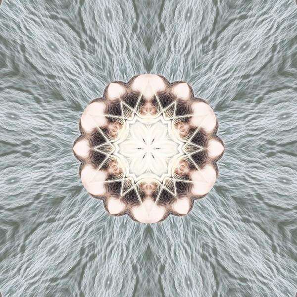 image%3A59780_mirror4.jpg