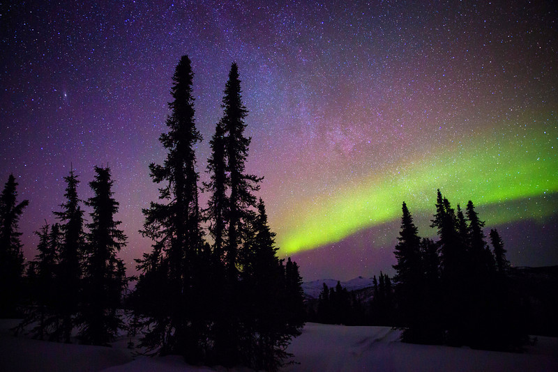 aurora-1696.jpg
