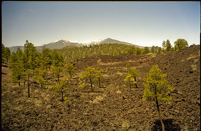 1998-07 Visit to Flagstaff