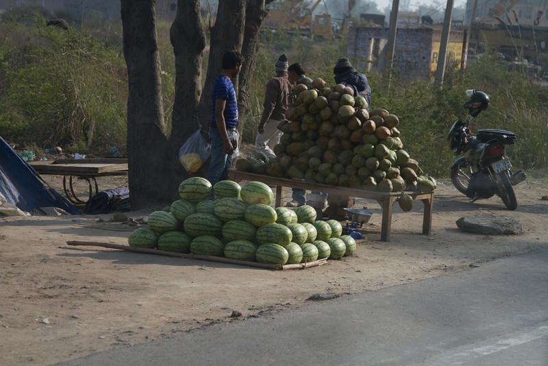 India_2012Feb-5536.jpg