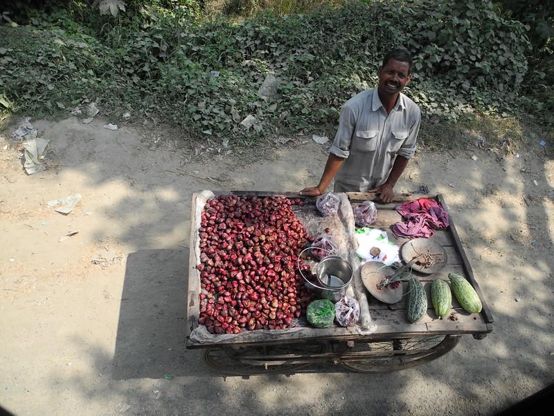 india2011 731.jpg
